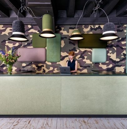 Acoustic Wall Panels in Reception Area.jpg