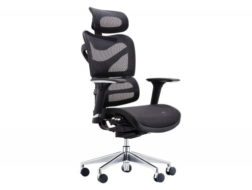 Dorsum Executive Ergonomic Full Mesh Office Chair with Headrest in Black