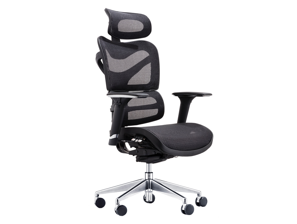 Dorsum Executive Ergonomic Full Mesh Office Chair with Headrest