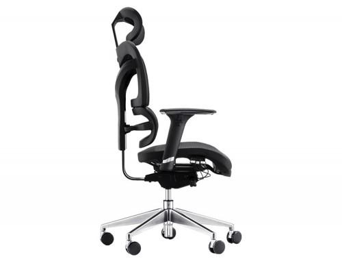 Dorsum Lumbar Support Chair Ergonomic Full Mesh Executive Chair