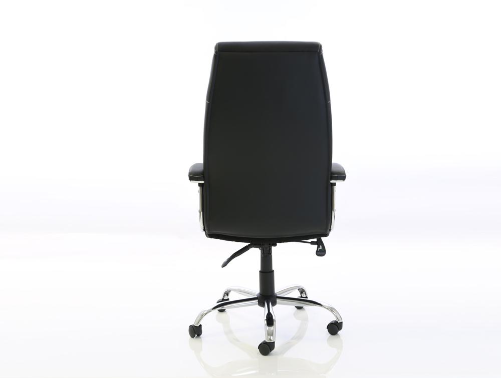 Dynamo Penza Black Executive Office Leather Chair Backside