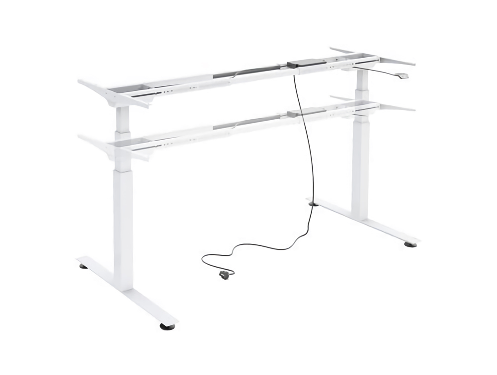 Ergomaster Electric Sit-Stand Contemporary Straight Desk