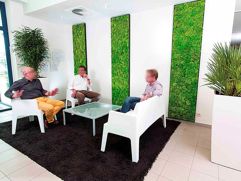 Green-Mood-Green-Walls-Ball-Moss-Euroscreen-in-Seating-Area