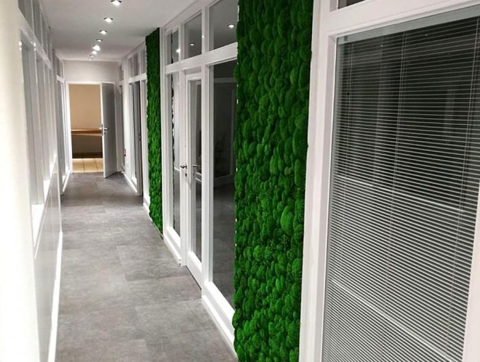 Green-Mood-Green-Walls-Ball-Moss-Wisag-Hallway