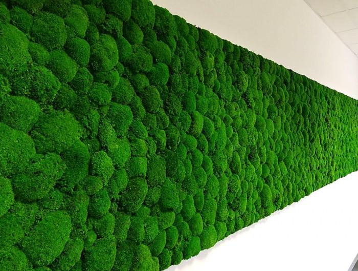 Green-Mood-Green-Walls-Ball-Moss-Wisag-Wall-Mounted