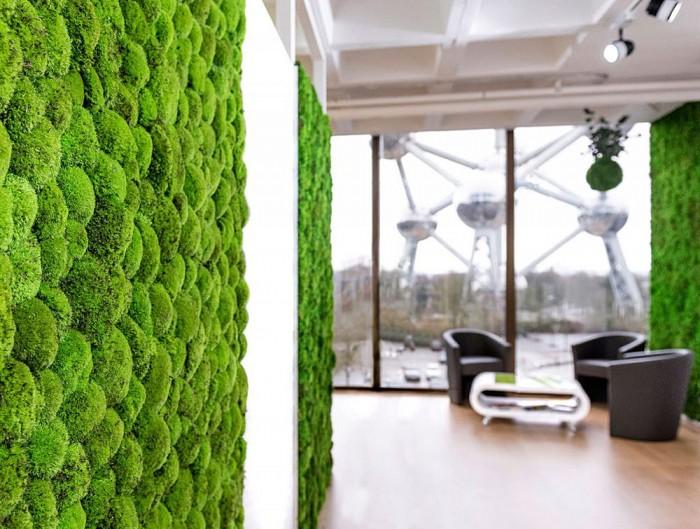 Green-Mood-Green-Walls-Ball-Moss-in-Corner-Seating-Area