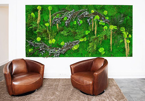Green Mood Green Walls Forest Anti Aging Center 500x350