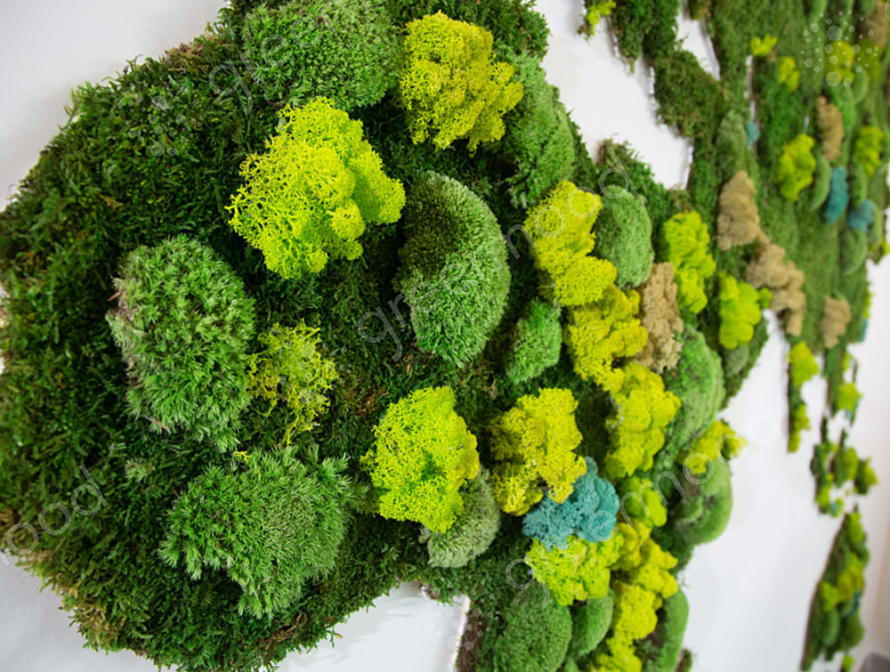 Green-Mood-Green-Walls-Forest-World-Map-Close-Up