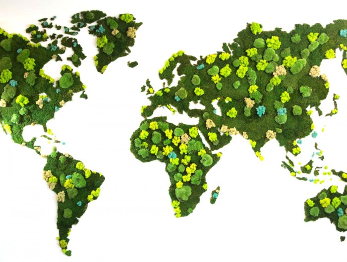 Green Mood Green Walls Forest World Map