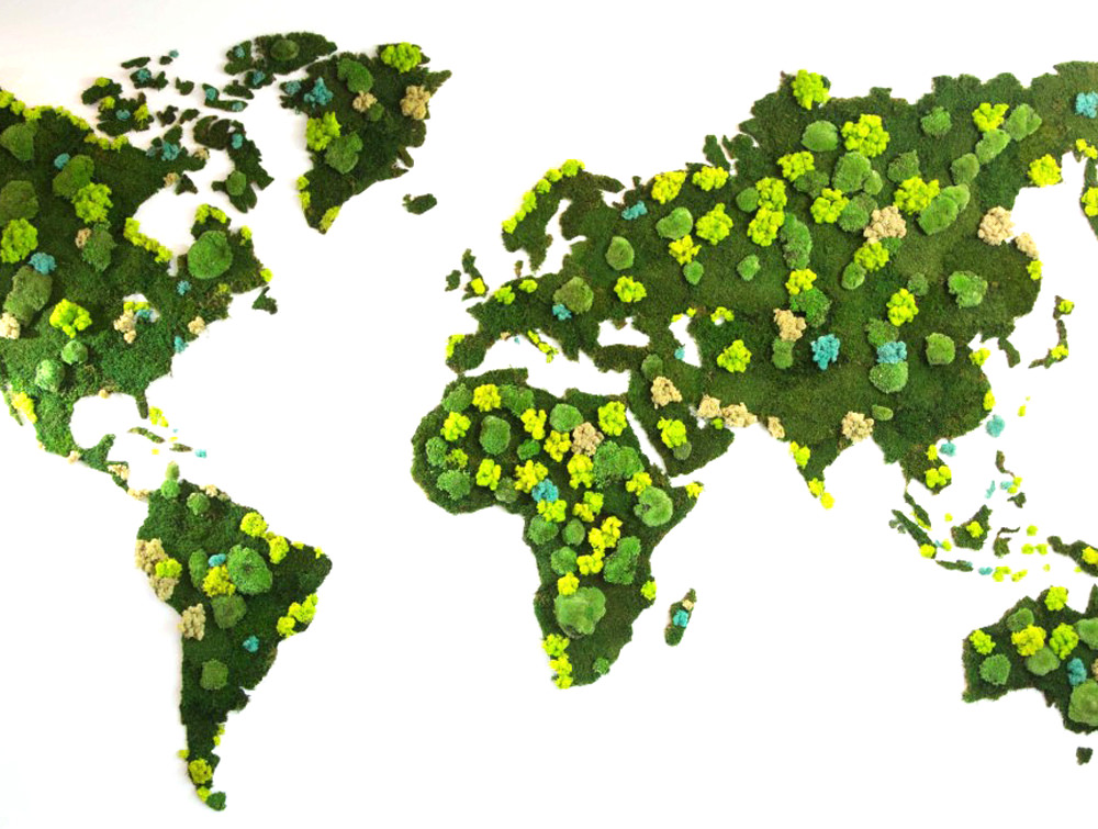 Green Mood Green Walls Forest World Map