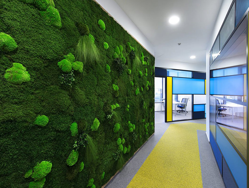 Green-Mood-Green-Walls-Forest-in-Nordic-Food-Office