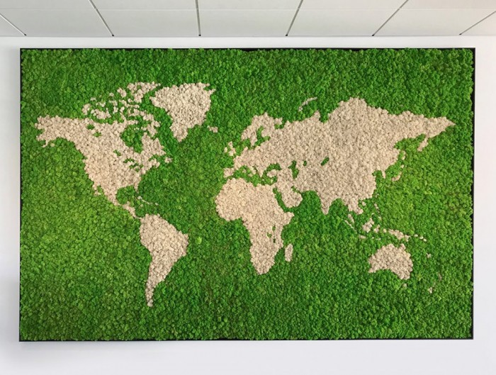 Green-Mood-Green-Walls-Lichen-Moss-World-Map-with-Background