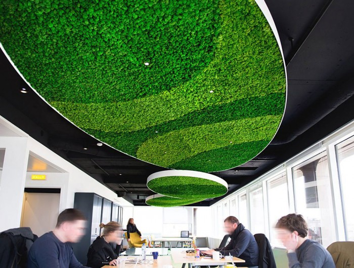 Green-Mood-Green-Walls-Lichen-Moss-in-Visiyou-Conference-Room