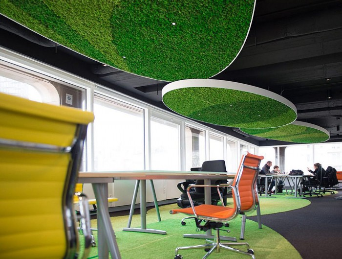 Green-Mood-Green-Walls-Lichen-Moss-in-Visiyou-Office