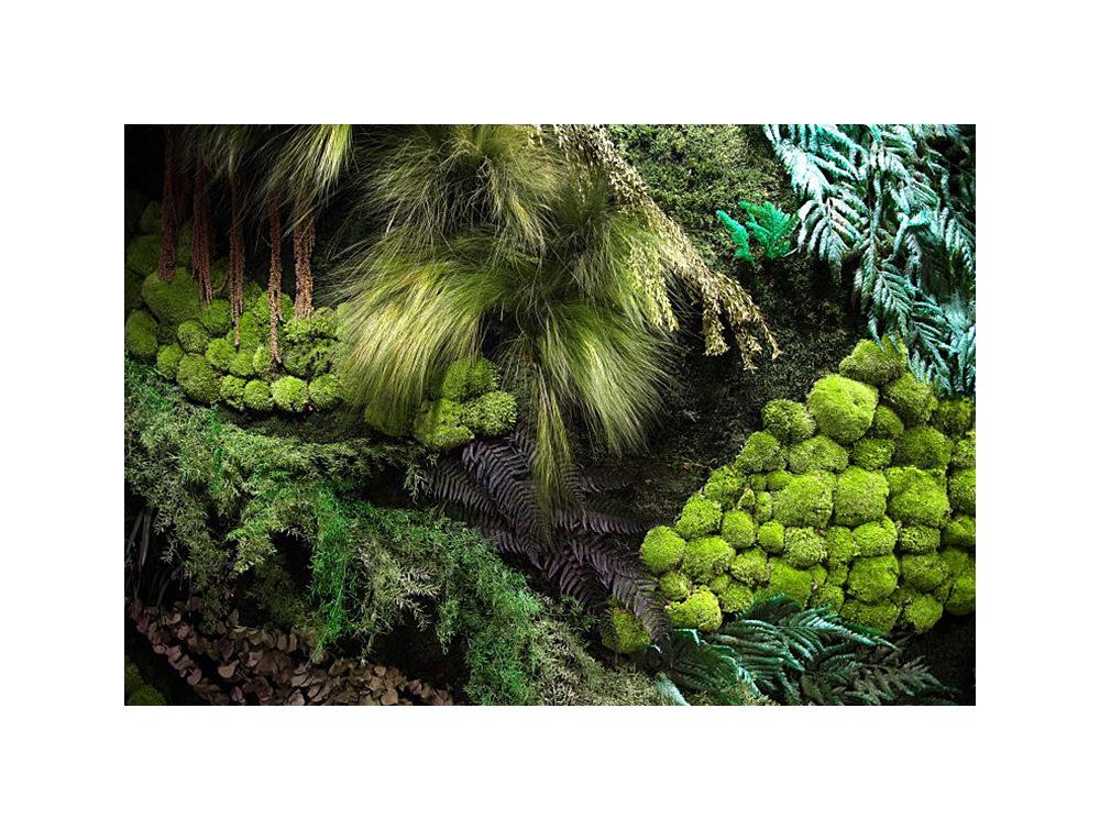 Green Mood Medium Forest Green Wall