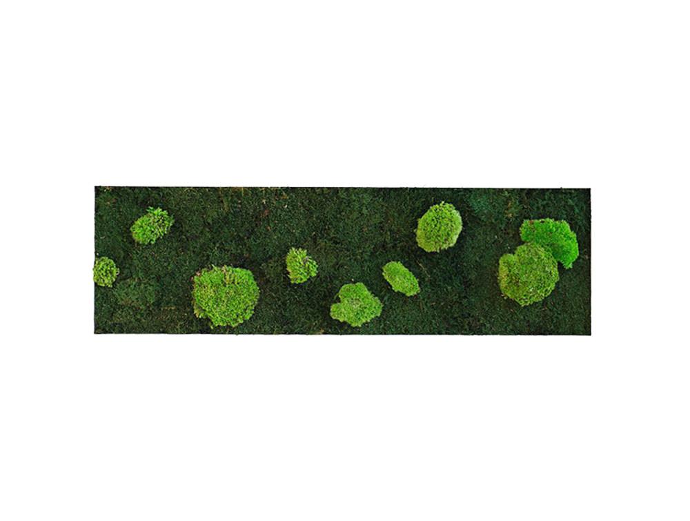 Green Mood Island Flat & Ball Moss Frame - 1150x350mm