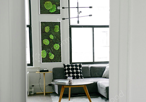 Green Mood Island Flat & Ball Moss Frame in Sitting Area 500x350