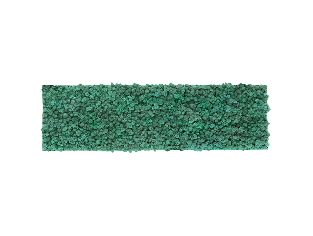 Green Mood Khloe Lichen Moss Frame - 350 x 650mm