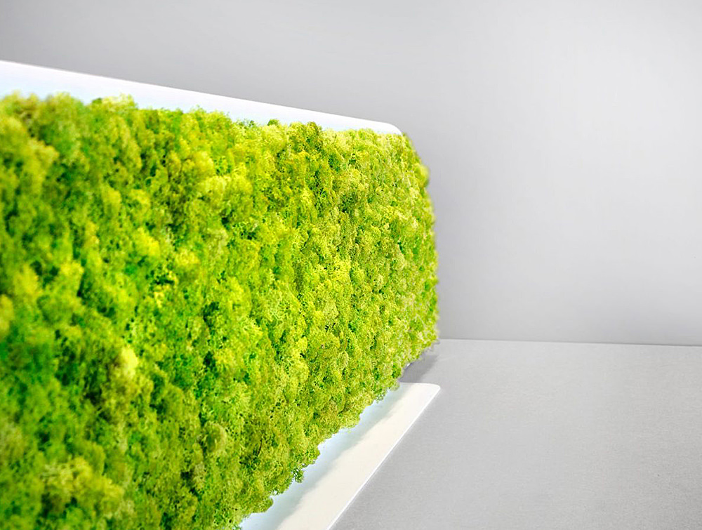 Green-Mood-Moss-Acoustic-Desk-Screens-with-Matte-White-Structure-Close-Up