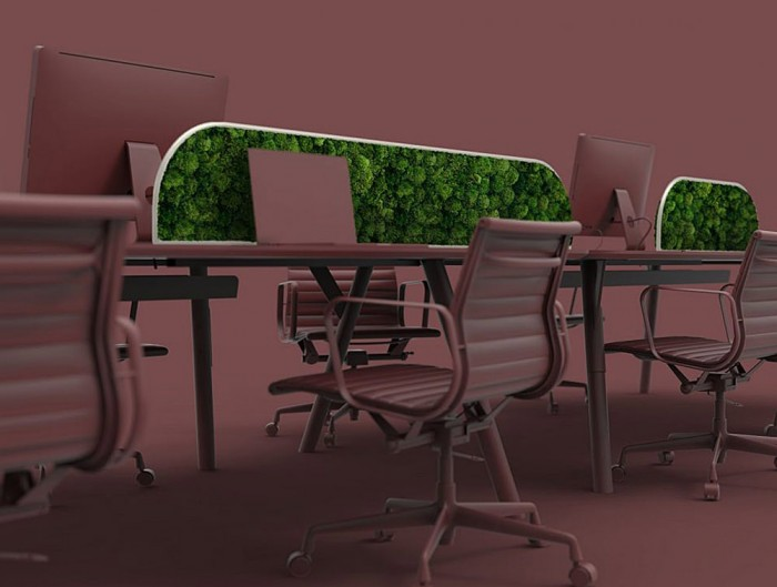 Green-Mood-Moss-Acoustic-Desk-Screens-with-Matte-White-Structure-in-Maroon-Office-Setting-Close-View