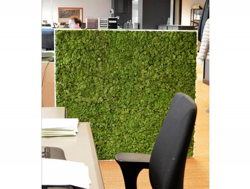 Green-Mood-Moss-Acoustic-Rectangular-Free-Standing-Screen-with-Green-Lichen-Moss-Filling