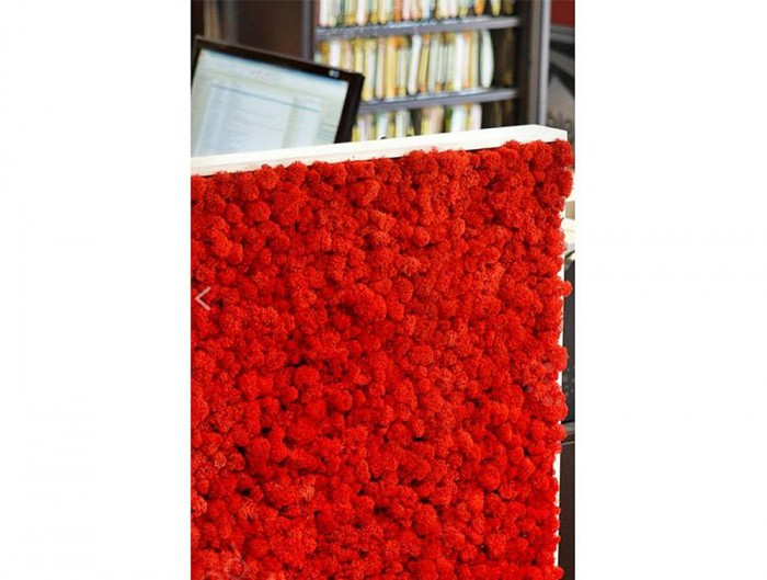 Green-Mood-Moss-Acoustic-Rectangular-Free-Standing-Screen-with-Red-Lichen-Moss-Filling-Close-View