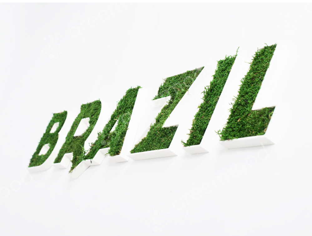 Green-Moss-Personalised-Logo-and-Letterings-Brazil