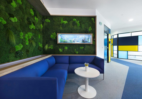 Green Plant Wall with Moss in Office-500x350