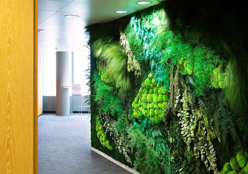 Green Wall in Office with Moss and Forest Plants-500x350