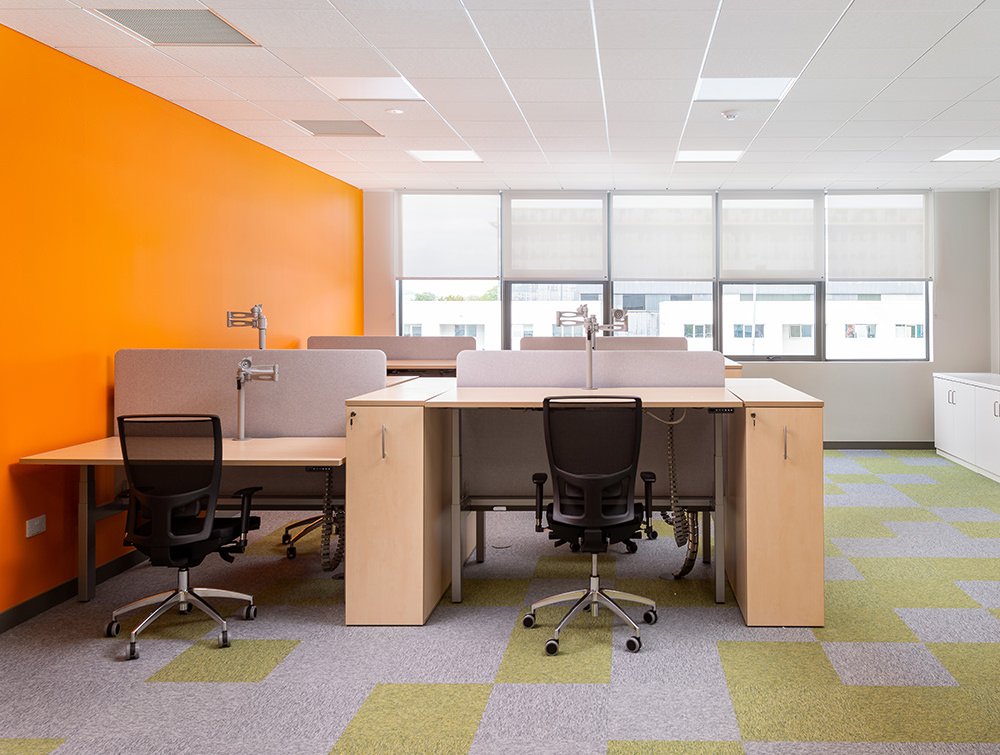 Leap Electric Adjustable Desks with Acoustic Desk Dividers Ergonomic Monitor Arms and Black Mesh Office Chairs