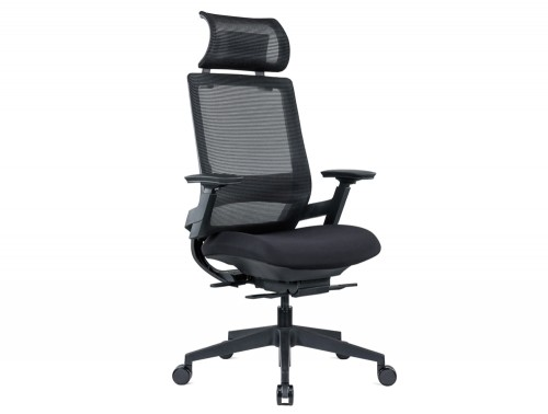 Maglia Office Mesh Task Chair with Headrest and Lumbar Support