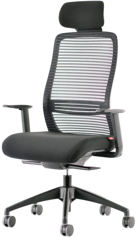NV Home Office Ergonomic Chair (1)