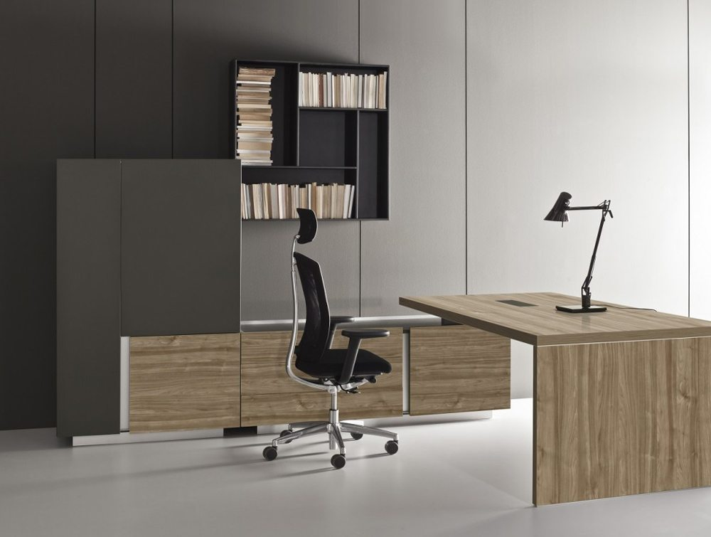 Ostin Executive Office Desk with Cabinets