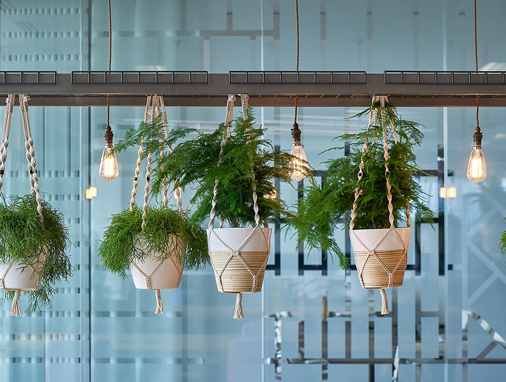 Relic-Cloud-Outdoor-Themed-Meeting-Room-Table-with-Light-Hanging-Plants.jpg