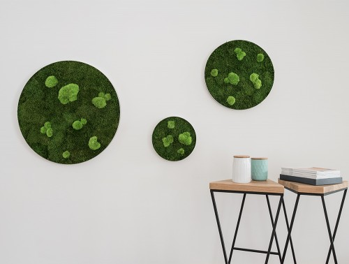 StyleGreen-Circle-Forest-and-Pole-Moss-Screens-Wall-Mounted