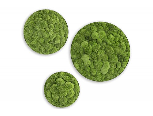 StyleGreen-Circle-Pole-Moss-Screen-Set-of-Three