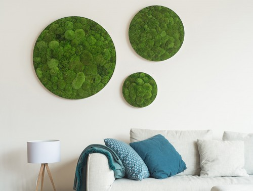 StyleGreen-Circle-Pole-Moss-Screen-Set-of-Three-Wall-Mounted-in-Sitting-Area