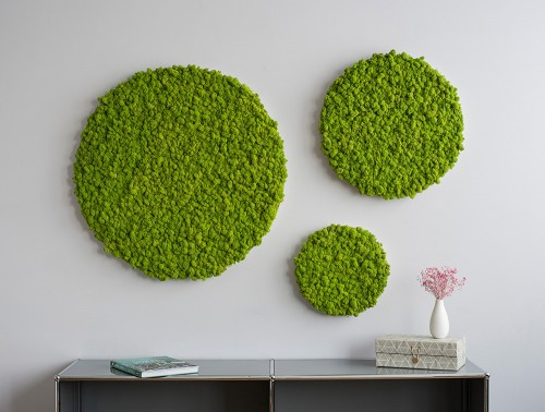 StyleGreen-Circle-Reindeer-Moss-Screens-Set-of-Three-Wall-Mounted-01