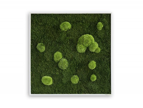 StyleGreen-Forest-Pole-Moss-Frame-800x800mm