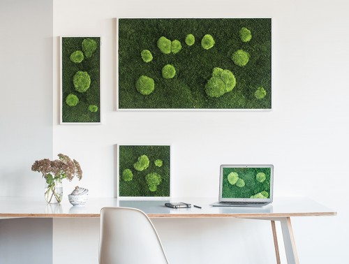 StyleGreen-Forest-Pole-Moss-Frame-Displayed-in-Three-Sizes
