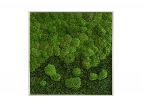StyleGreen-Forest-Pole-Moss-Merge-Frame-800x800mm