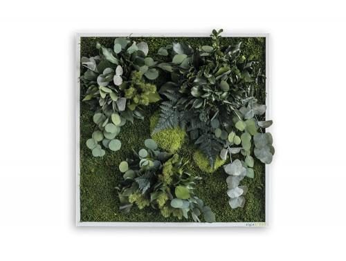 StyleGreen-Island-Plant-Frame-550x550mm