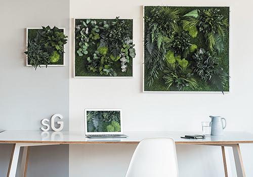 StyleGreen Island Plant Frame Displayed in Three Sizes 500x350