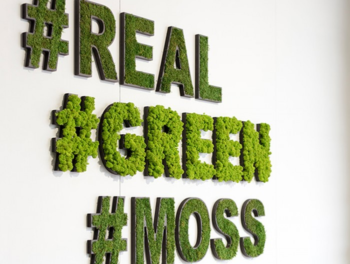 StyleGreen-Pictogram-Green-Moss-Hashtag-Real-Green-Moss-Sign-with-Forest-and-Reindeer-Moss