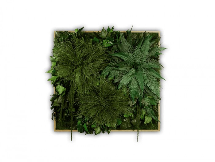 StyleGreen-Plant-Sound-Picture-with-Jungle-Filling
