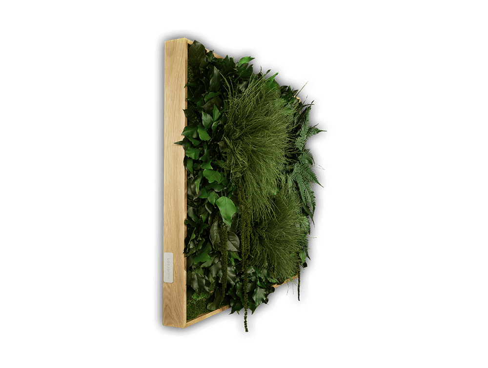 StyleGreen-Plant-Sound-Picture-with-Jungle-Filling-Side-View