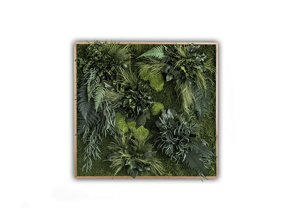 StyleGreen-Plant-Sound-Picture-with-Plant-Island-Filling