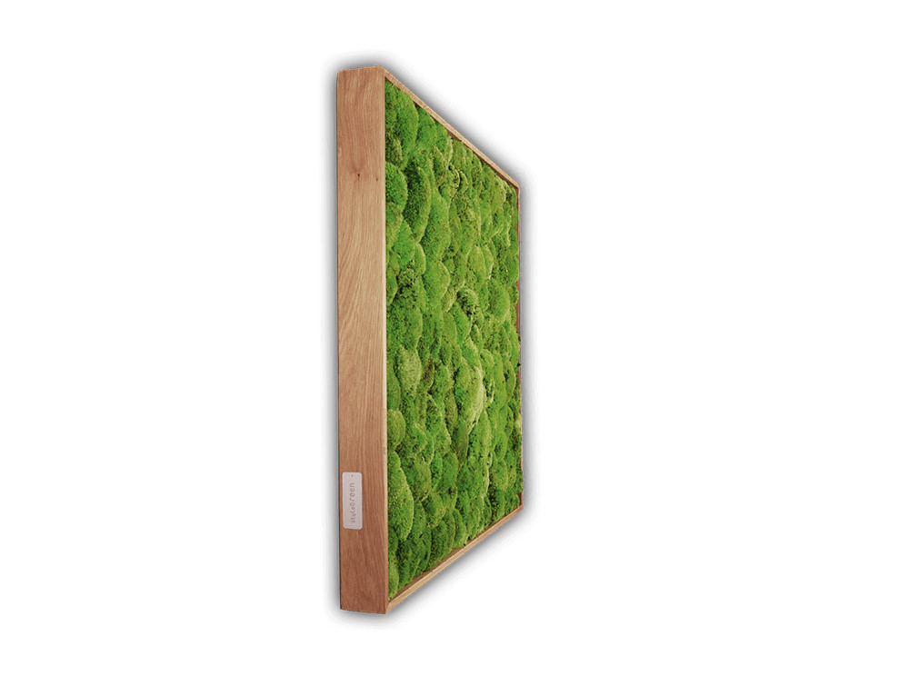 StyleGreen-Plant-Sound-Picture-with-Pole-Moss-Filling-Angle-View