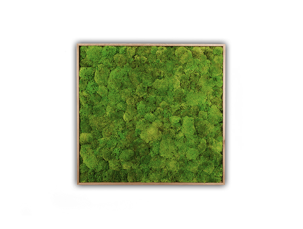 StyleGreen-Plant-Sound-Picture-with-Pole-Moss-Filling