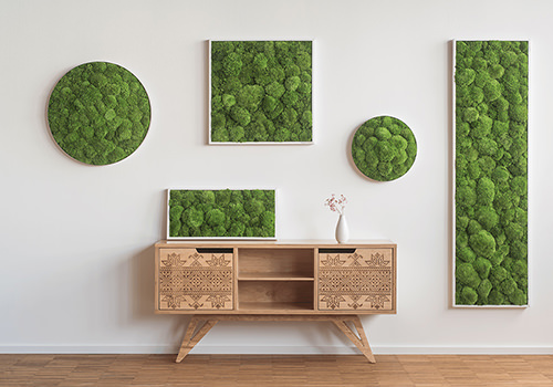 StyleGreen Pole Moss Frames Displayed with Circle Pole Moss Screens 500x350